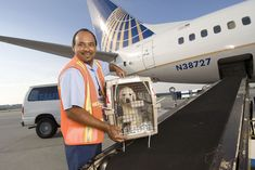 """United Suspends Its Pet Cargo Service While Investigations Proceed  United Airlines is suspending its pet-shipping program just after it mistakenly sent one dog to Japan instead of Kanas. Ace Pet Moving/United Airlines  Skift Take: United charges a lot of money to ship dogs and promises on its website """"industry-leading comfort and safety features."""" United hasn't always delivered so it's probably time to press pause and figure out if there are endemic problems with the program.   Brian Sumers…"""