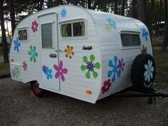 Name: Lil' Junie - co-owner 1519  Make: Sero Scotty  Year: 1961  Model: sportsman.  Isn't she Cute!!!! From: Sisters on the Fly