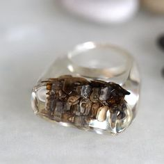 Clear Resin Ring with Case of Caddisfly made of snail shells