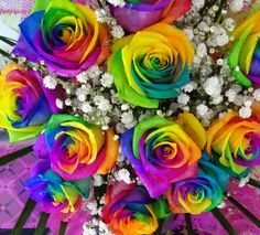 Gorgeous bouquet of rainbow roses with baby's breath for the Bride of course. -LP <3