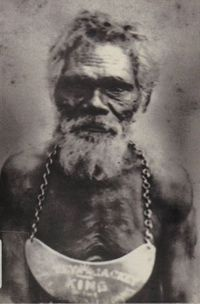 Portrait of Bilin Bilin wearing a breast plate around his neck Aboriginal Man, Aboriginal Culture, Aboriginal People, Australian People, Australian Artists, Australian Aboriginal History, Stone Age People, Native American Photography, Australian Aboriginals
