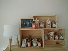 Geboortegeschenkjes van Anna. Mini cactusjes, stoffen zakjes en kraftzakjes.