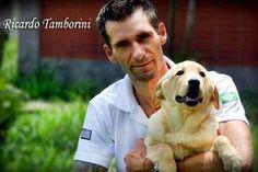 Rolar – Ensine ao seu cachorro o comando rola