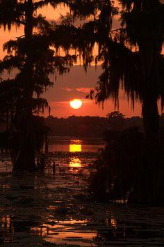 Lake Martin, Breaux Bridge, La - beautiful, any time of year Louisiana Swamp, Louisiana Art, Louisiana Homes, Beautiful Sunset, Beautiful Places, Beautiful Pictures, Breaux Bridge, Nature Pictures, The Places Youll Go