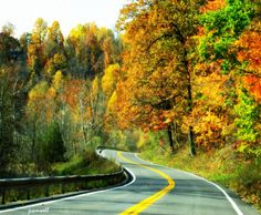 """Curves Ahead"" - Route 174 between Camillus, NY and Marcellus, NY"