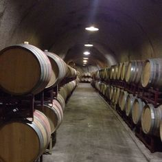 Nicholson Ranch Winery (Napa Valley) -a tour we took of their wine caves. Beautiful place & great wine