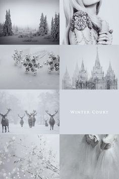 "aly-naith: "" Courts of Prythian aesthetic: ""Winter Court "" """