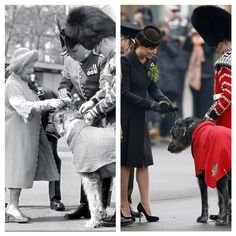 How fabulous is this! Pregnant Kate presents Irish guards with traditional shamrocks on St Patrick's Day, just like the Queen Mother in 1988. #katemiddleton #queen #princess #queenmother #stpatricksday #irishguards #shamrocks #dog #royals
