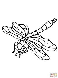 Free Printable Scorpion Coloring Pages For Kids Desert