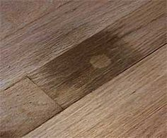 how to remove pet urine stains from wood floors - hydrogen