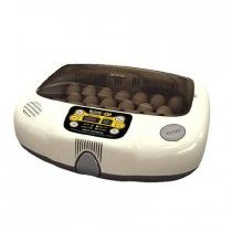Grow or start your hatching projects with the perfect incubator! Huge selection of both large and small incubators with fast shipping! Click or call today! Chicken Incubator, Egg Incubator, Poultry Supplies, Pet Supplies, Poultry Equipment, Hatching Chickens, The Selection, Eggs, Projects