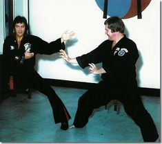 Elvis Presley giving a Karate demonstration in Memphis : July 4, 1974