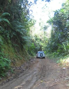 Costa Rica Driving Corcovado - GPSeTravelguides - http://www.gpsetravelguides.com/page/index.html