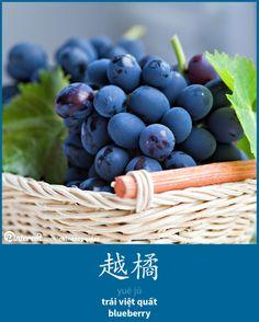 越橘 - yuèjú - việt quất - blueberry