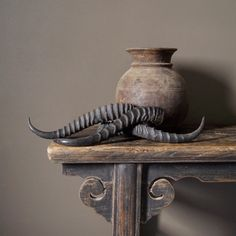 springbok hoorn