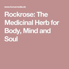 Rockrose: The Medicinal Herb for Body, Mind and Soul
