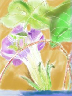 一朵牵牛花 a morning glory #sketchbookpro #expressionism #digital #watercolour #drawing #art