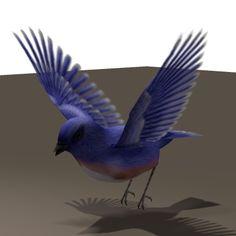 Bird_Habataki.png