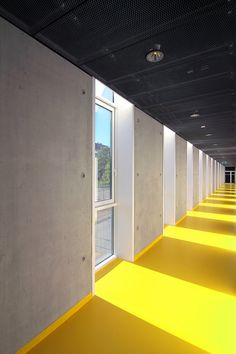Image 7 of 40 from gallery of Sports Hall in Poznan / Neostudio Architekci. Courtesy of Neostudio Architekci Gym Interior, Yellow Interior, Interior Architecture, Interior And Exterior, Interior Decorating, H Design, House Design, Interior Design Gallery, Restroom Design