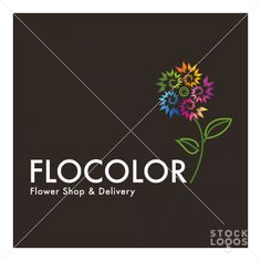 FLOCOLOR  -  by amir