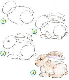 Drawing Ideas for Beginners Step by Step - Animals / How to Draw. Painting and Drawing for Kids / Luntiks. Children's Arts and Crafts Activities. Drawing and Poems Easy Drawings Sketches, Cute Easy Drawings, Pencil Art Drawings, Animal Drawings, Drawing Lessons For Kids, Art Drawings For Kids, Drawing Ideas, Drawing Tips, How To Draw Painting