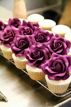 Rosy plum cakes Starting a Catering Business Start your own catering business http://www.startingacateringbusiness.com #cakes http://pinterest.com/ahaishopping/