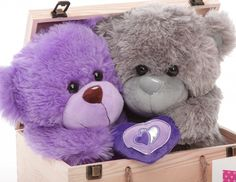 lovely purple n gray teddy bear images