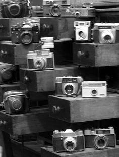 Máquinas fotográficas, Sonia Carroza Antiguedades