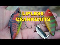 Lipless Crankbaits: Best Rod, Reel, And Line Combo | Bass Fishing - YouTube