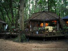 Hostel in the Forest -Brunswick, Georgia.   Beautiful amazing place, can't wait to go back! You get to walk around the forest, sleep in tree-houses, canoe around a small lake, sit by the fire, enjoy fresh vegan food (moslty from the garden <3), theres a spiritual dome (made of wood and glass), a music dome, cob kitchen, a natural pool, a labyrinth, outside showers, gardens with swings... the list goes on.... Heavenly... all made by loving hands of beautiful amazing people. Keep it up!