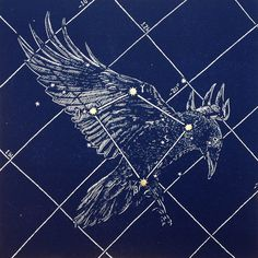 Corvus Constellation (I know it's supposed to be an eagle, but I think all birds match with Ravenclaw.)
