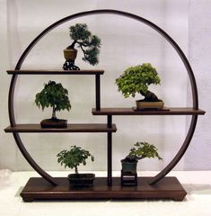 La mini forêt zen .... de Dream30