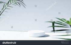 Stock Portfolio, Illustration, Plants, Illustrations, Plant, Planets