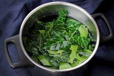 Waschmittel aus Efeu selber machen How To Make Slime, Lettuce, Spinach, Cabbage, Cleaning, Vegetables, Tips, Food, Zero Waste
