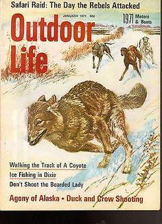 Outdoor Life Magazine January 1971 Walking The Track of A Coyote Motors Boats | eBay