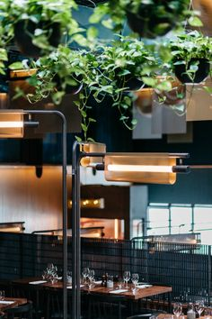 425 Fahrenheit restaurant by Atelier Zebulon Perron along with MRDK architecture is a chemistry of good food, decor and greenery. Vintage Restaurant, Restaurant Design, Restaurant Bar, Interior Lighting, Lighting Design, Chinese Lights, Do It Yourself Design, Light Fittings, Ceiling Lamp