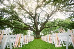 ribbons on chairs. SUPER simple (and likely super cheap) ceremony décor