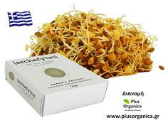 Ιδιαίτερα οφέλη του φύτρου φακής: Η περιεκτικότητα σε σίδηρο την έχει κάνει πολύ γνωστή ωστόσο περιέχει και αρκετό φολικό οξύ - βιταμίνη Β9 η οποία συμβάλλει στη μείωση της κούρασης και της κόπωσης. Προϊόν βιολογικής γεωργίας Προέλευση Ελλάδα http://www.plusorganica.gr/proionta/phytres/phytres-biologikes-kalliergeias-archephytro/phytro-phakes-biologiko-archephytro
