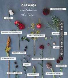 Wow! -  | CHECK OUT THESE OTHER COOL IDEAS FOR GREAT Wedding Trends 2017 AT…