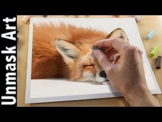 Fox Painting with Soft Pastels | Live Tutorial - YouTube