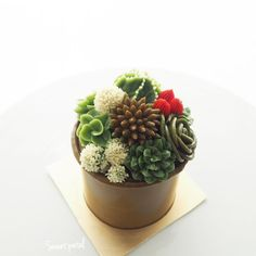 """1,805 Likes, 11 Comments - Flower Cake & Class (@sweetpetalcake) on Instagram: """"Succulents on cylinder cake style"""""""