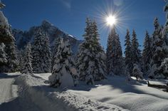 Wonderful wintertime