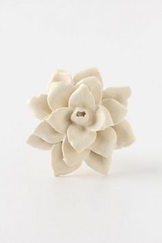 new drawer pulls: try making something like this from polymer clay. Inspired by Anthropologie drawer pulls Knobs And Handles, Knobs And Pulls, Drawer Pulls, Drawer Knobs, Cabinet Knobs, Anthropologie, Lenten Rose, Old Dressers, Pomellato