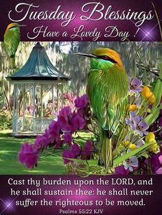 Tuesday Blessings. Psalms 55:22 KJV Have a Lovely Day!