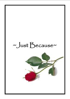 Just because....single rose; photography