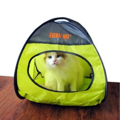Polyester Folding Cat Tent / Cat House / Cat Bed GREEN (Size:L40W27H37 CM) ** See this great image  : Cat tower