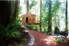 Treehouse Point, a tiny little Seattle-area resort where you can stay in a treehouse.