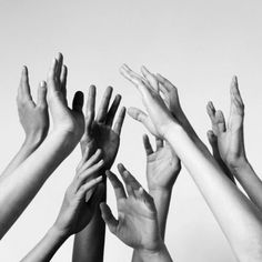 So many hands Hands Reaching Out, What Is Human, Hand Photography, Hand Reference, Poses, Black And White Photography, People, Beautiful, Instagram