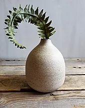 SHOP | RESEED CERAMICS Handmade Ceramic, Ceramic Art, Michigan, Collections, Seasons, Ceramics, Shop, How To Make, Hall Pottery