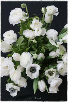 Vaaleanpunainen hirsitalo - Divaaniblogit White Flowers, Beautiful Flowers, Indoor Flowers, Flower Bomb, White Gardens, Bouquet, Flower Vases, Spring Flowers, Planting Flowers